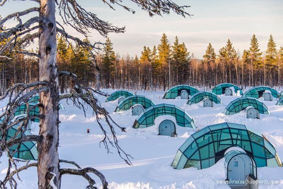 Truly once-in-a-lifetime. We slept in a heated igloo under the Northern Lights  http://www.bruisedpassports.com/wheres/kakslauttanen-arctic-resort-finland-lapland-review