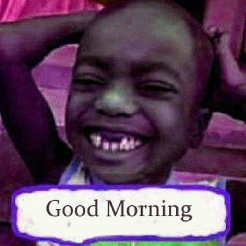 38 Funny Good Morning Images Download For Wallpaper Pictures Panky Post Com Funny Good Morning Memes Funny Good Morning Images Good Morning Images Download