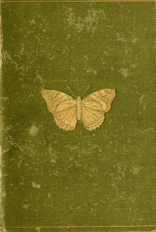 Butterflies and Moths (British) by W. Furneaux                 Published 1894 by Longmans, Green, and Co. archive.org