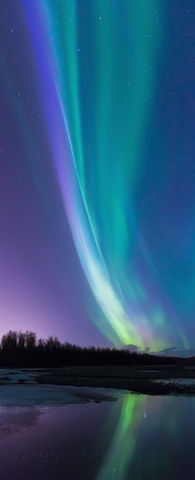 Blue Flame, Colour photograph (Giclée) by Shane Lamb. Alaskan night sky is dark from August to April. The Aurora is a natural light display caused by charged particles from the sun interacting with the earth's atmosphere. When these particles collide with oxygen, yellows and greens are produced, with nitrogen they produce reds, violets and rarely blues