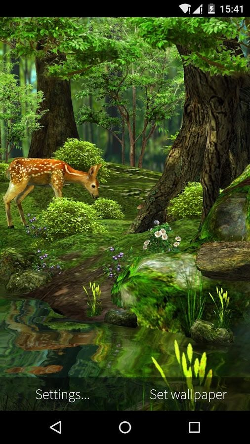 3d Deer Nature Live Wallpaper Screenshot Live Wallpapers Nature Wallpaper
