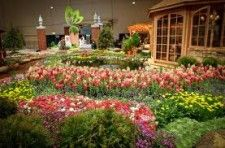 The Arbor Day Garden Expo Teaches Aurora, CO Locals About Becoming a Green Thumb!