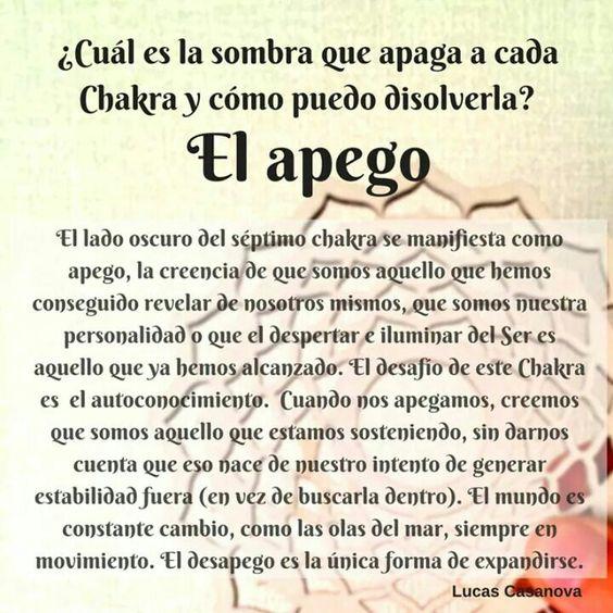 Chakra 7 / Mar: El Té de Flor de Crisantemo Blanca es para el 7o Chakra. Importantísimo fluir con los cambios de la vida, desapegarse, aceptar, agradecer, dejar ir, para expandirse.