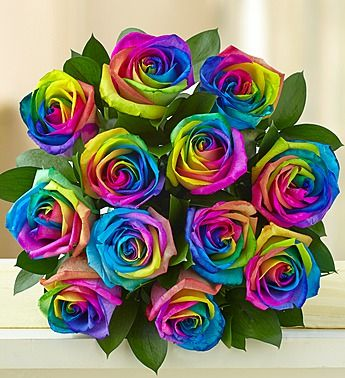 kaleidoscope roses 12 24 stems teacher appreciation