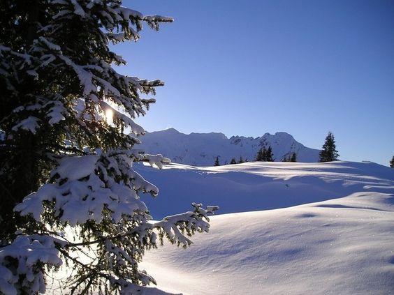 Photo : Impression sur neige,  France, Paysages, Actualité, Météo, Neiges. Toutes les photos de   sur L'Internaute
