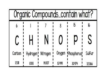 Organic Compounds Foldable | Graphic Organizers, Organizers and ...