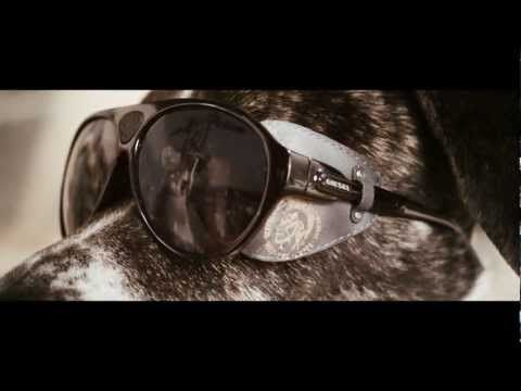 Dogs with Sunglasses - Diesel Summer 2012 Collection