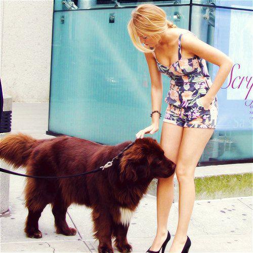 Blake Lively & Dog