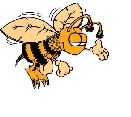 Houston Beekeepers Association Home Page