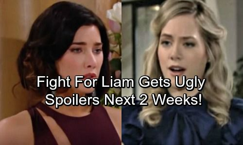 The Bold And The Beautiful Spoilers For Next 2 Weeks Liam S Shocking News Steffy Fights Hope For Liam In 2020 Bold And The Beautiful Shocking News Soap News