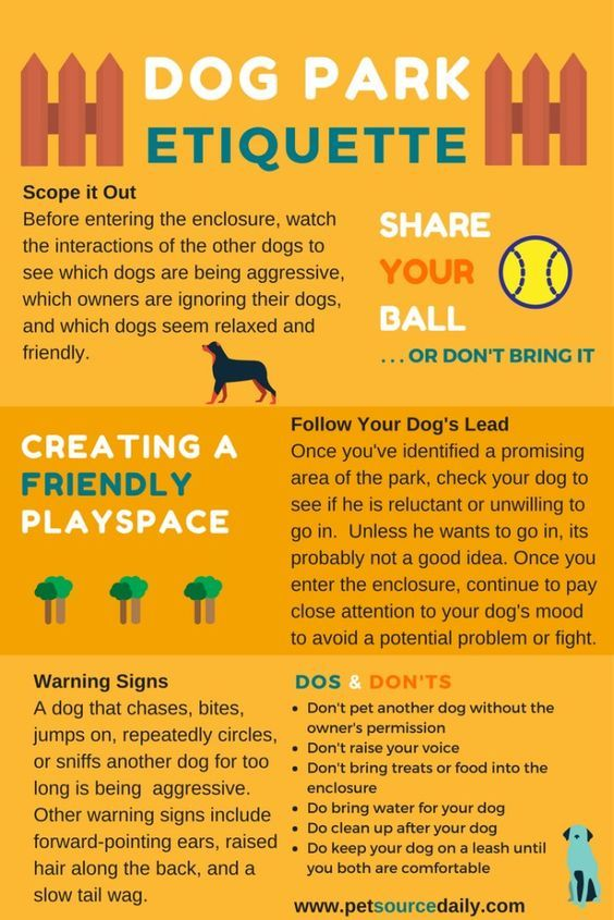 Dog Park Etiquette Happy Saturday Are You Ready For The Dog