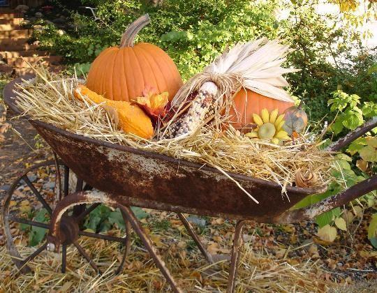 15 astuces géniales pour recycler une vieille brouette –Une décoration saisonnière