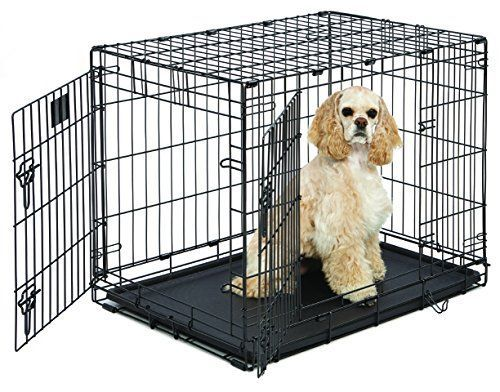 Midwest Life Stages Folding Metal Dog Crate Get The Best Price