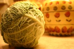 Select the Freshest Cabbage & Prepare a Thrifty Meal Tonight