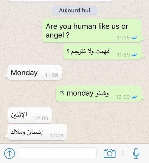 صور محادثات مضحكة ليدي بيرد Angel 11 Human