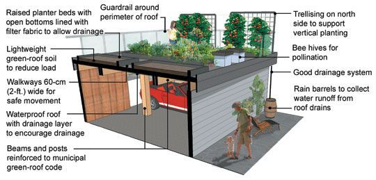 How To Design And Create A Green Roof Garden By Senga Lindsay From Bcliving Diy Gardening Rooftopgarden Green Roof Green Roof Garden Green Roof Design