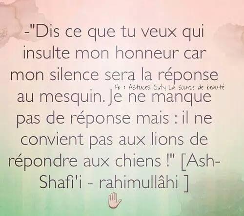 Image Associée Rappel Islam Citation Et Insultes
