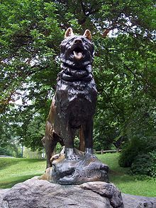 Balto....dedicated to the sled dog teams that led several teams through a 1925 snow storm in Nome, Alaska. These teams where carrying medicine that would stop a Diphtheria epidemic.