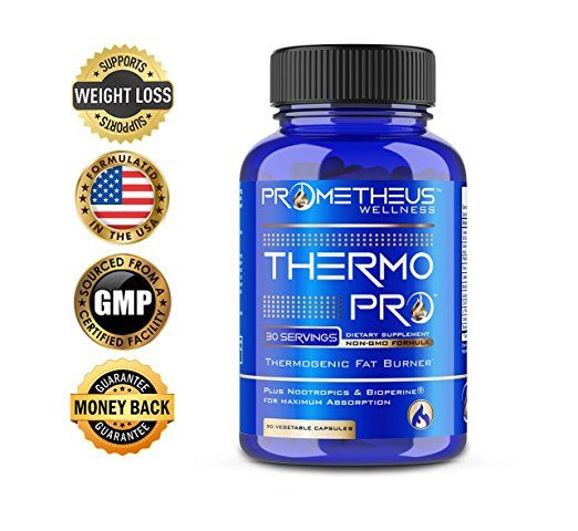 thermopro fat burner review)