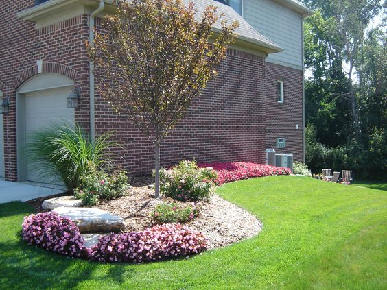 Begonias ornamental grass shrub rose and crab apple tree for Ornamental grass landscape ideas