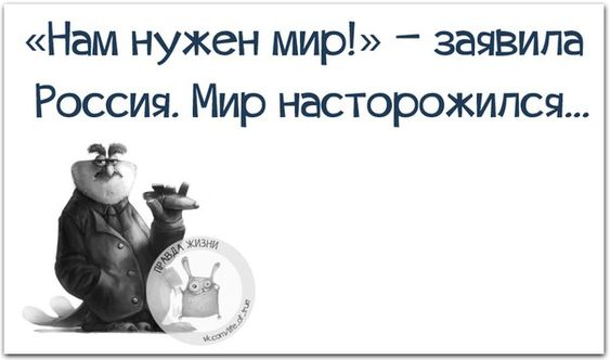 https://i.pinimg.com/564x/ac/00/71/ac0071c4ea438ba0b3455658eb803bd6.jpg