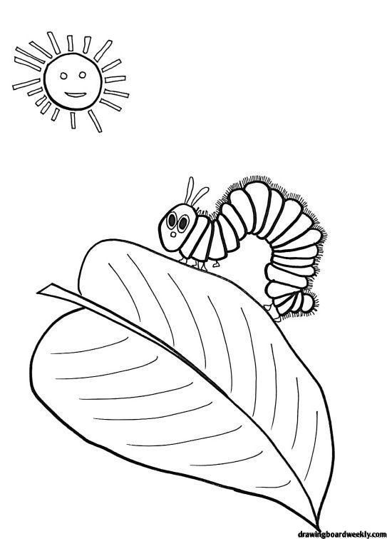 Very Hungry Caterpillar Coloring Page In 2020 Hungry Caterpillar