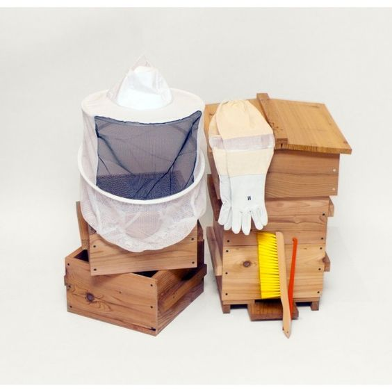beekeeping starter kit starter kit products and bees