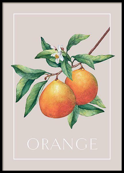 Vintage Oranges Affiche I 2020 Plakater Vintage Prints Billeder