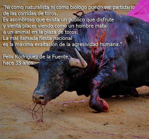 las corridas de toros - Google Search: