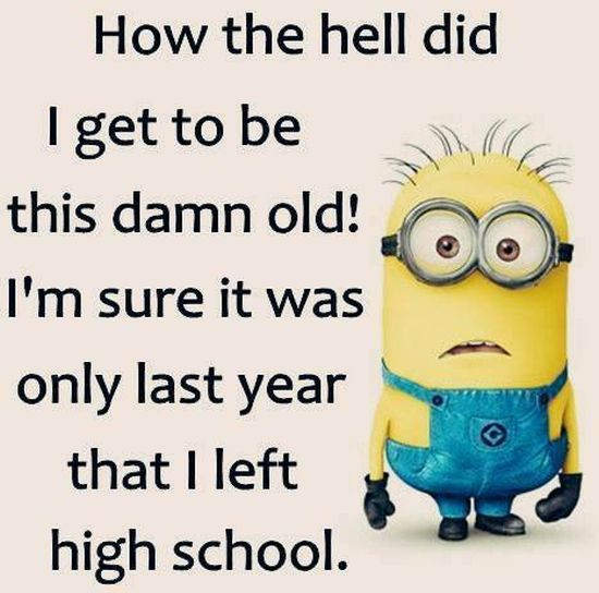 Funny Minion Quotes About School: Pinterest • The World's Catalog Of Ideas