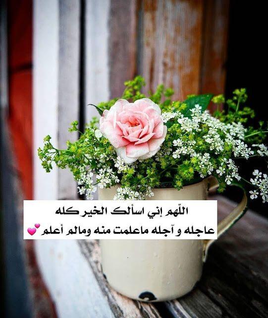 صور دعاء دعاء جميلة أدعية دينية اسلامية نسائية دعاء للمرأة Beautiful Images Live Lokai Bracelet Beautiful