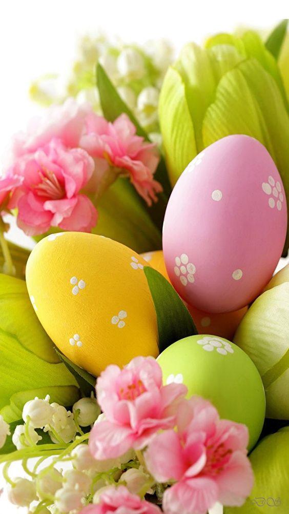 Pascua 🐣