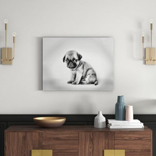Small Pug Puppy Photographic Print On Canvas In Monochrome East