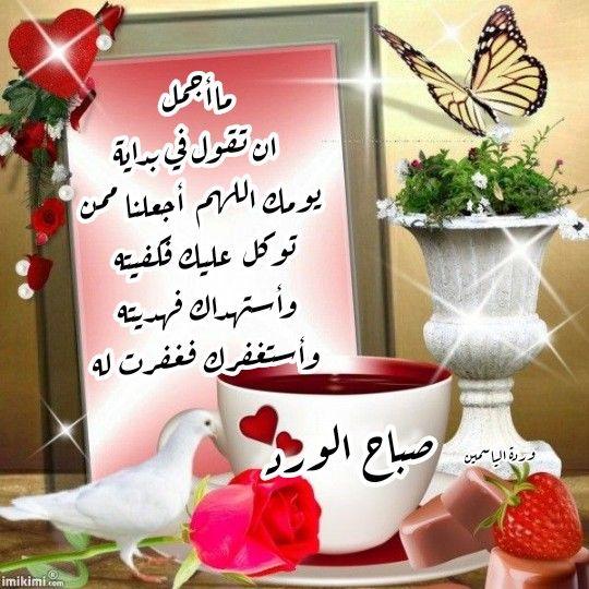 كل صباح وأنتم في حفظ الرحمن صباح الورد Beautiful Nature Wallpaper Nature Wallpaper Beautiful Gif