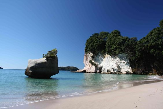 Amoklauf Neuseeland Video Pinterest: Neuseeland Nordinsel Im Neuseeland Reiseführer Http://www