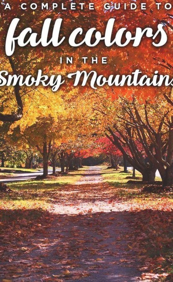 Fall Colors In The Smoky Mountains In 2020 Smokey Mountains Vacation Tennessee Fall Foliage Smoky Mountains Vacation