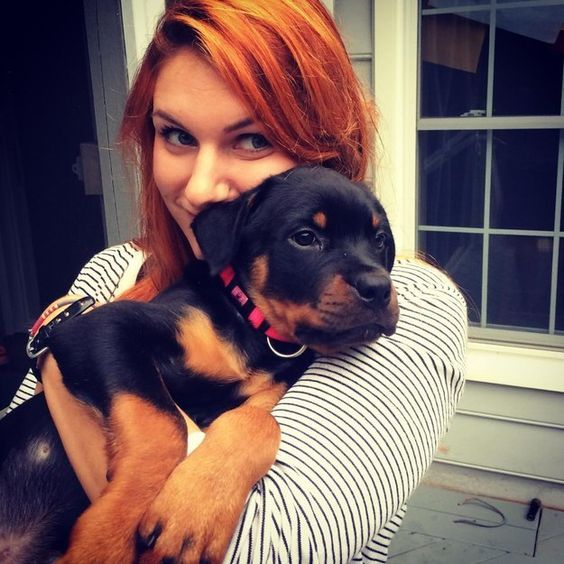 30 Ferociously Adorable Rottweilers Will Melt Your Heart