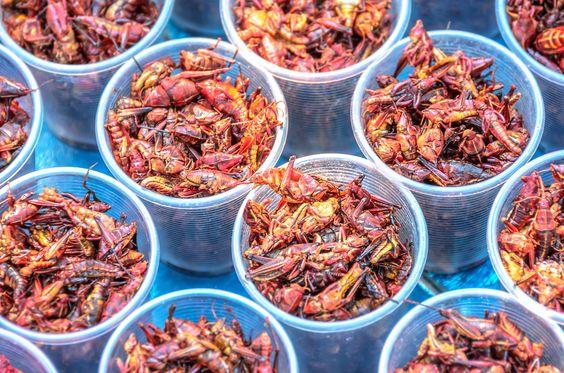 Chapulines: un platillo típico, tradicional e imperdible para degustar en Oaxaca. http://www.bestday.com.mx/Oaxaca/Atracciones/