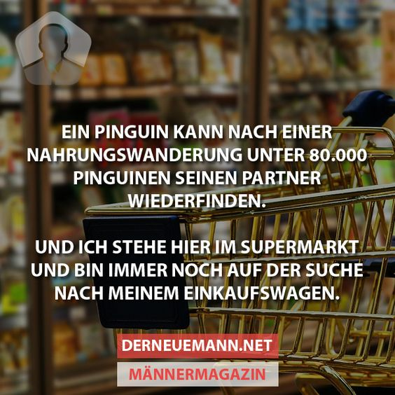Pinguin #derneuemann #humor #lustig #spaß