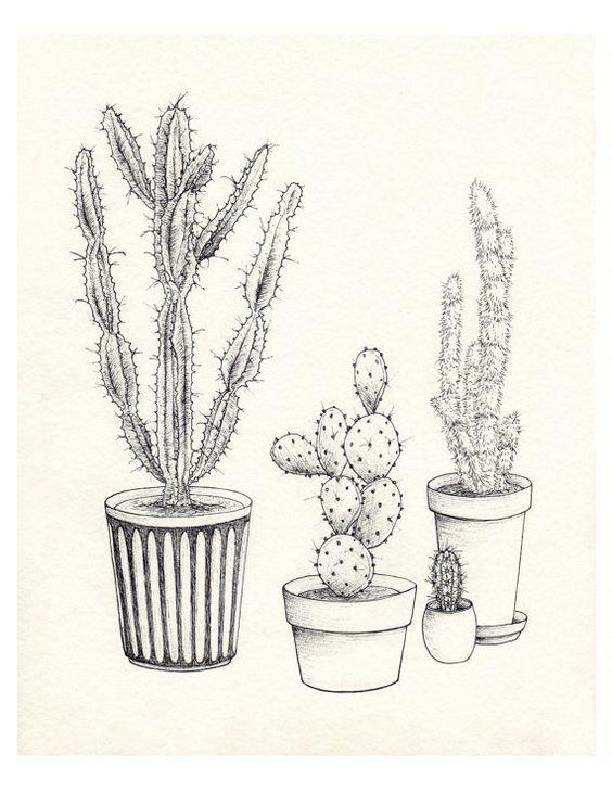 Noir  blanc Collection de cactus Je. Giclee print par HilaryWootton