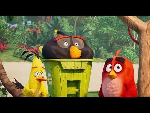 Angry Birds 2 La Pelicula Trailer Espanol Hd Angry Birds Movie Angry Birds Birds