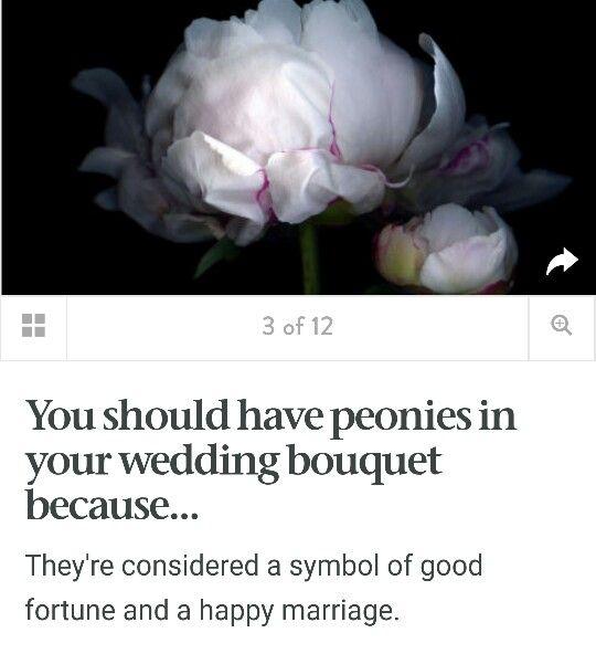 Peonies in Wedding Bouquet