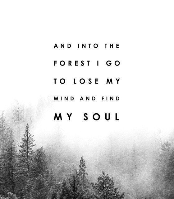 And Into The Forest I Go To Lose My Mind And Find My Soul