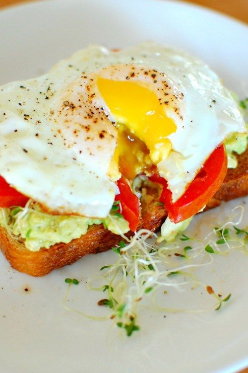 Avocado toast with egg and alfalfa sprouts. Great for breakfast or brunch. | joeshealthymeals.com