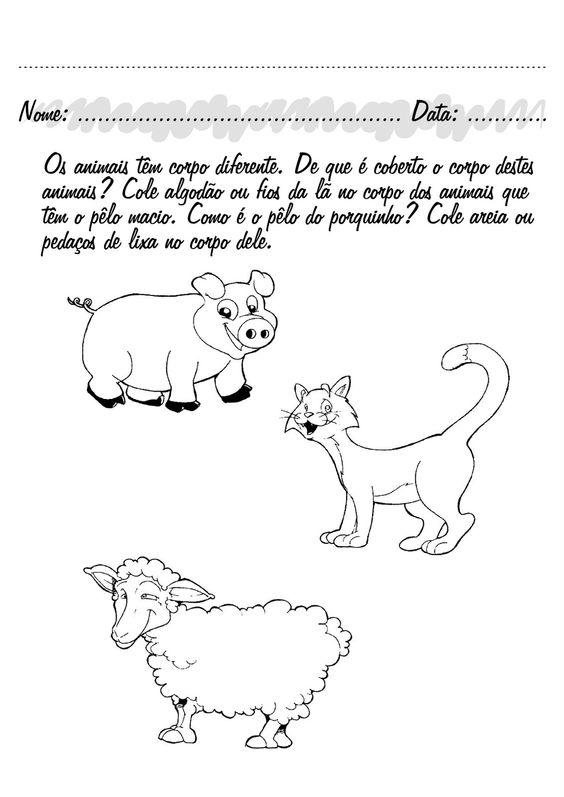 animais no pre escolar - Pesquisa Google