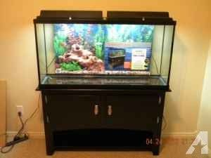 marineland black personals Find pet and animal supplies at want ad digest classified ads search local pet and animal supply classified ads in the northeast.