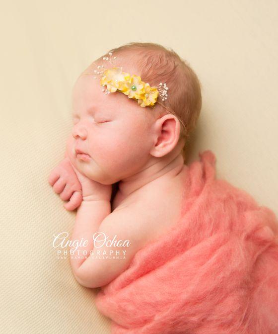 Pleasanton california maternity photographer pleasanton california photographers and photography