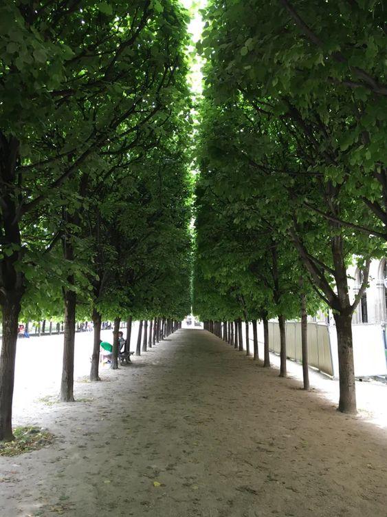 Jardin du Palais Royal – Paris [OC] : FrancePics