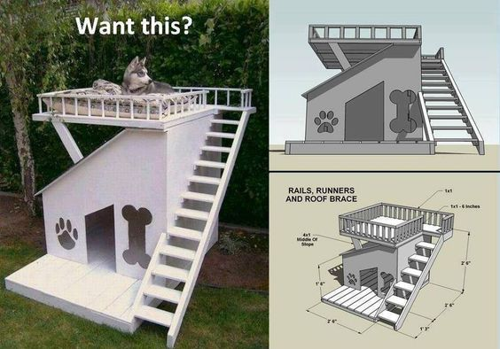 Cool dog house idea