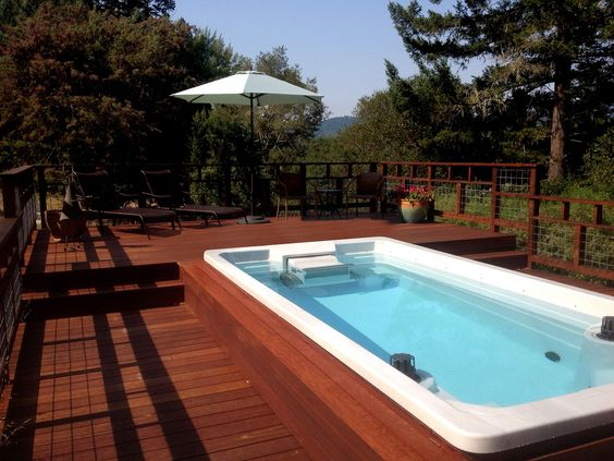 Endless pools spas and swim on pinterest for Pool and spa show wa